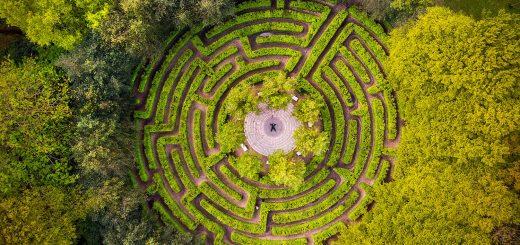 maze drone donald yip