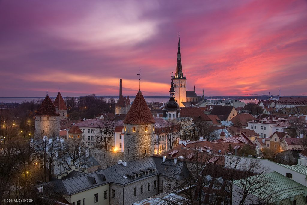 Tallinn estonia donald yip